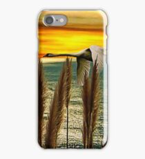 Afar Upon the Wind iPhone Case/Skin