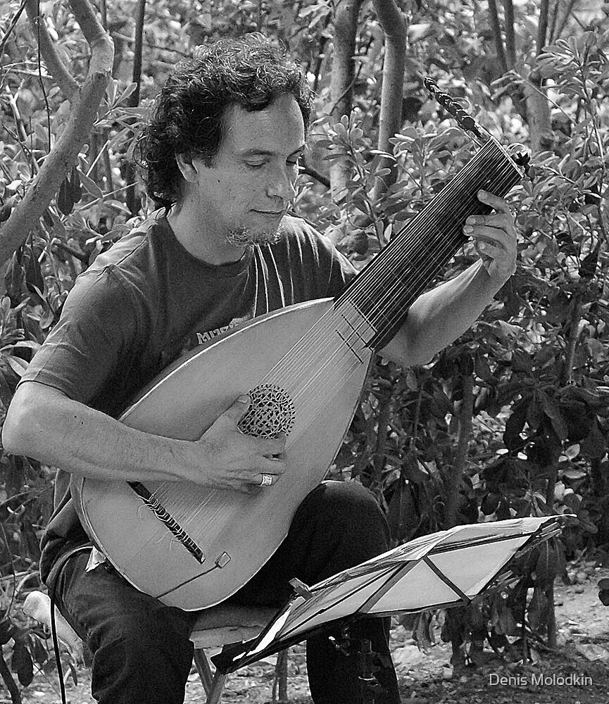 Guitara Magica by Denis Molodkin