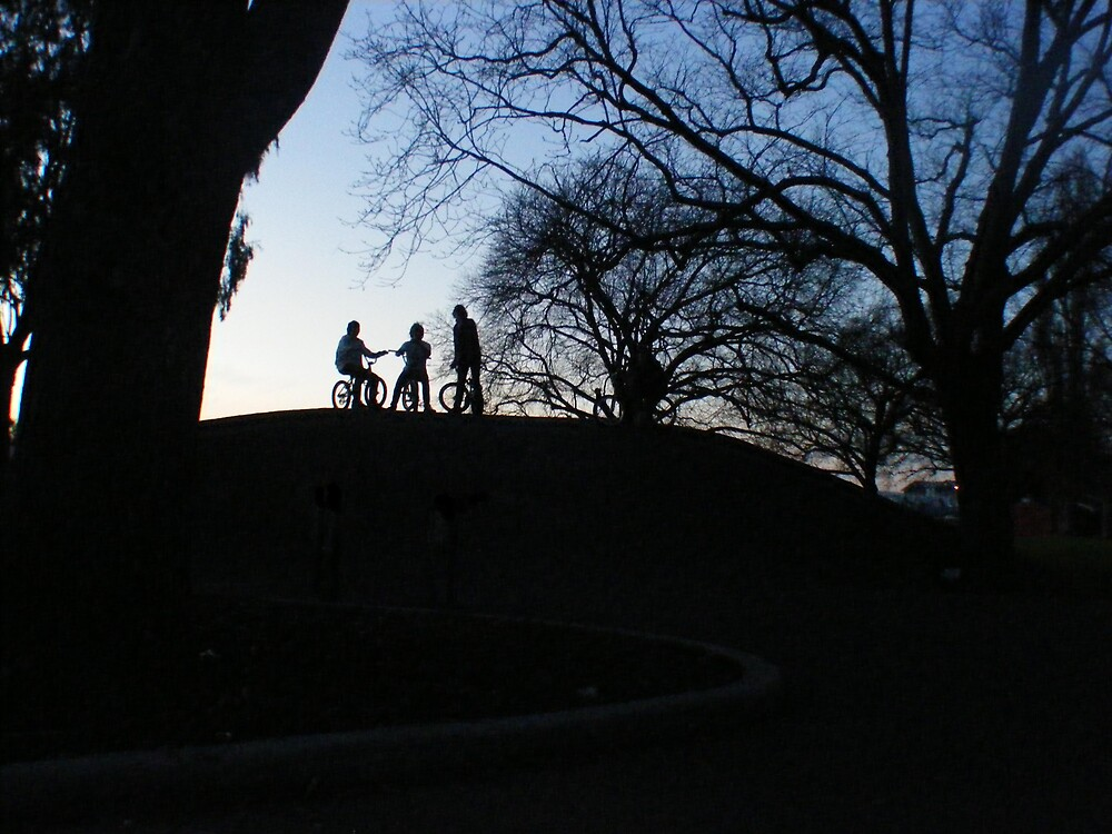 Welcome to bmx. by Jackson Townsend