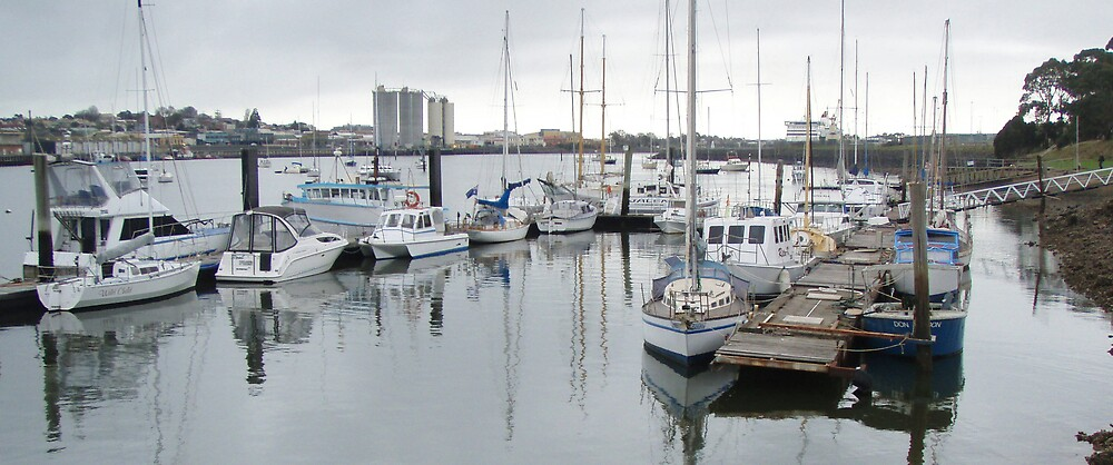 some boats at the Devonport marina by gaylene