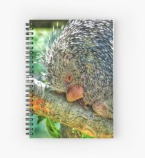 Snuggly when He's Sleeping Spiral Notebook