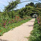 Monet's Garden, Giverny, France by Elena Skvortsova