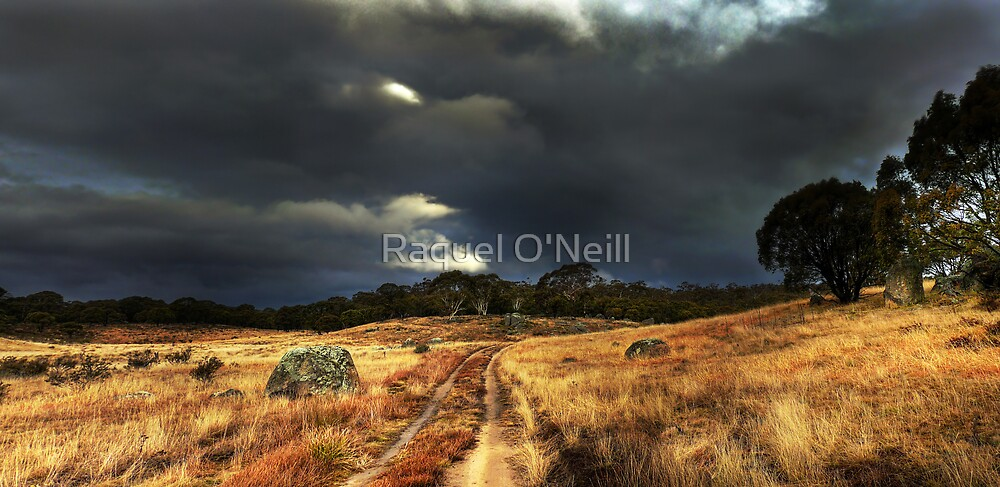 Storm Front by Raquel O'Neill