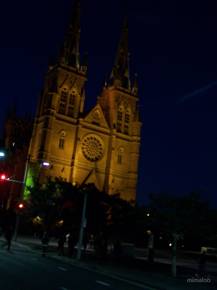 St Marys Cathedral  by mimaloo