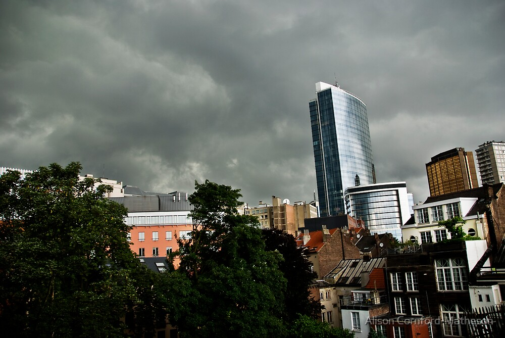 Storm Warning by Alison Cornford-Matheson