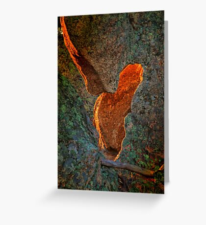 """""""Reflecting the Radiance"""" Greeting Card"""