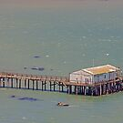 Fishing Company on a Pier - Point Reyes National Park  California by Buckwhite