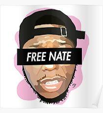 Nate Robinson (Free Nate) Poster