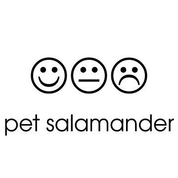 Pet Salamander by i-love-food