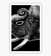 Leucism: Africana (African Elephant) Sticker
