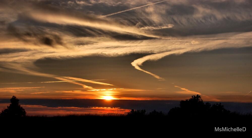 Buffalo Sunset by MsMichelleD