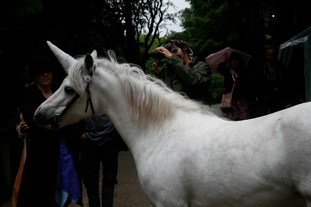Unicorns exist!! by Amanda Gazidis