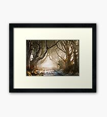 The Dark Hedges   County Antrim  Northern Ireland Framed Print