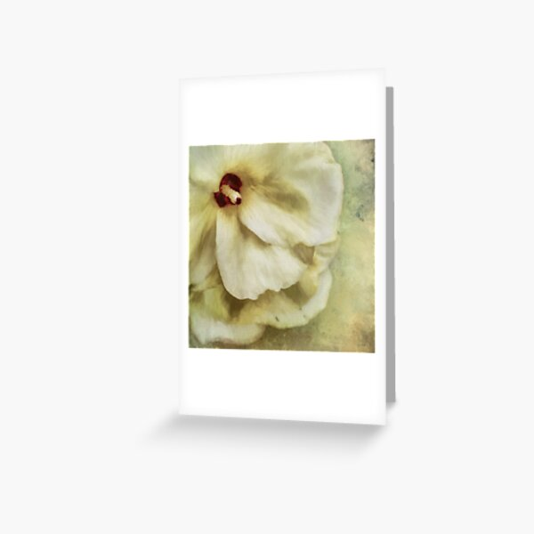 Pure Magnificence Greeting Card
