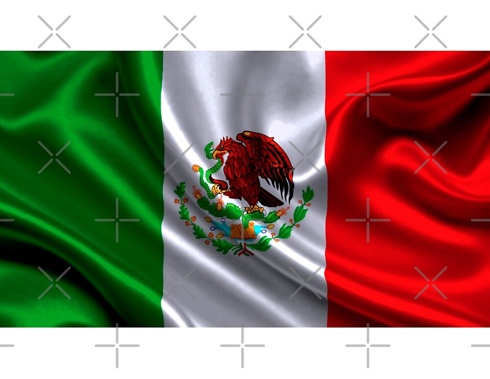 Mexico Colors Flag iPhone / Samsung Galaxy Case by Tucoshoppe