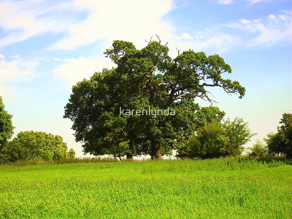 Ye Old Oak Tree by karenlynda