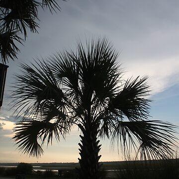 North Carolina Palm by DavidGelhar