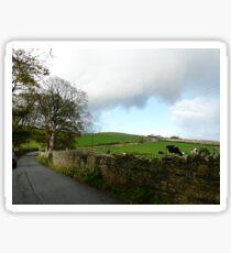 Cumbrian Cows Sticker