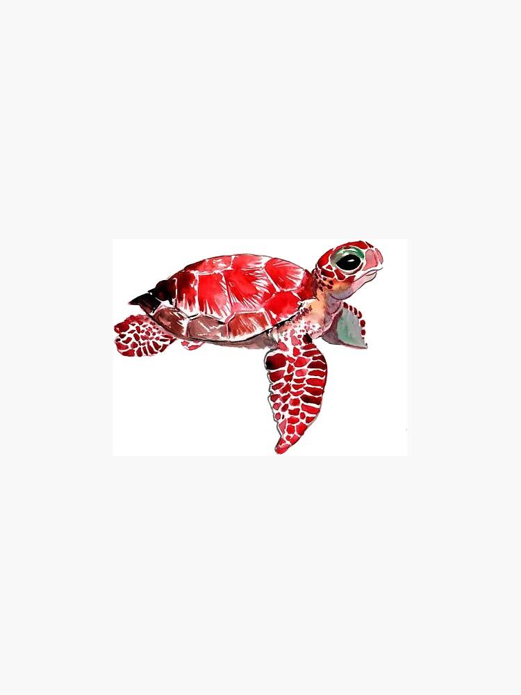 Baby Sea turtle sticker by katherineshek