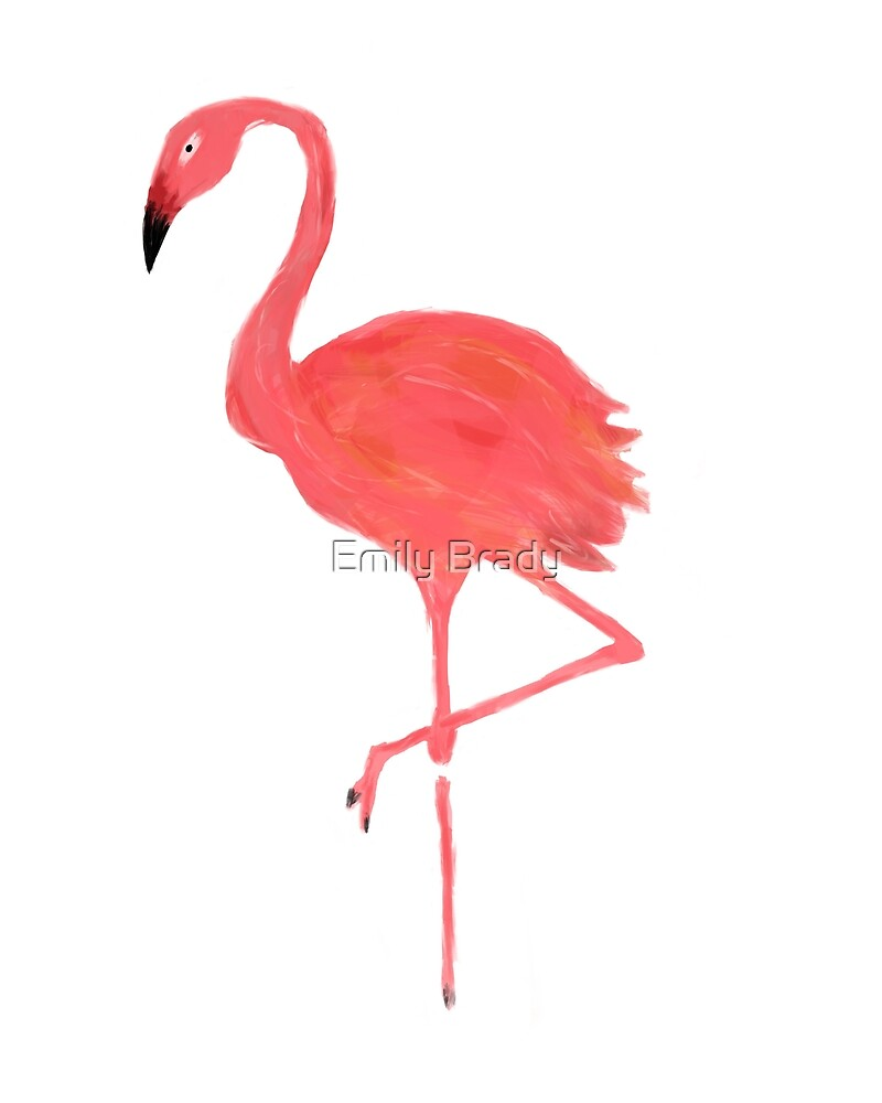 Flamingo by Emily Brady