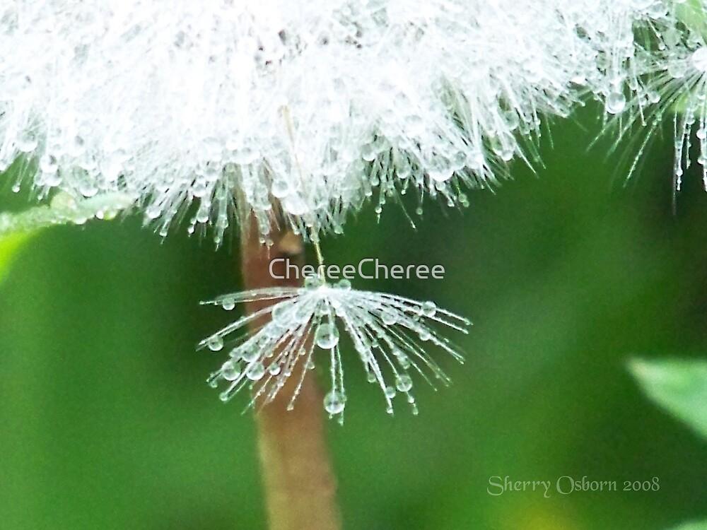 Dandelion by ChereeCheree