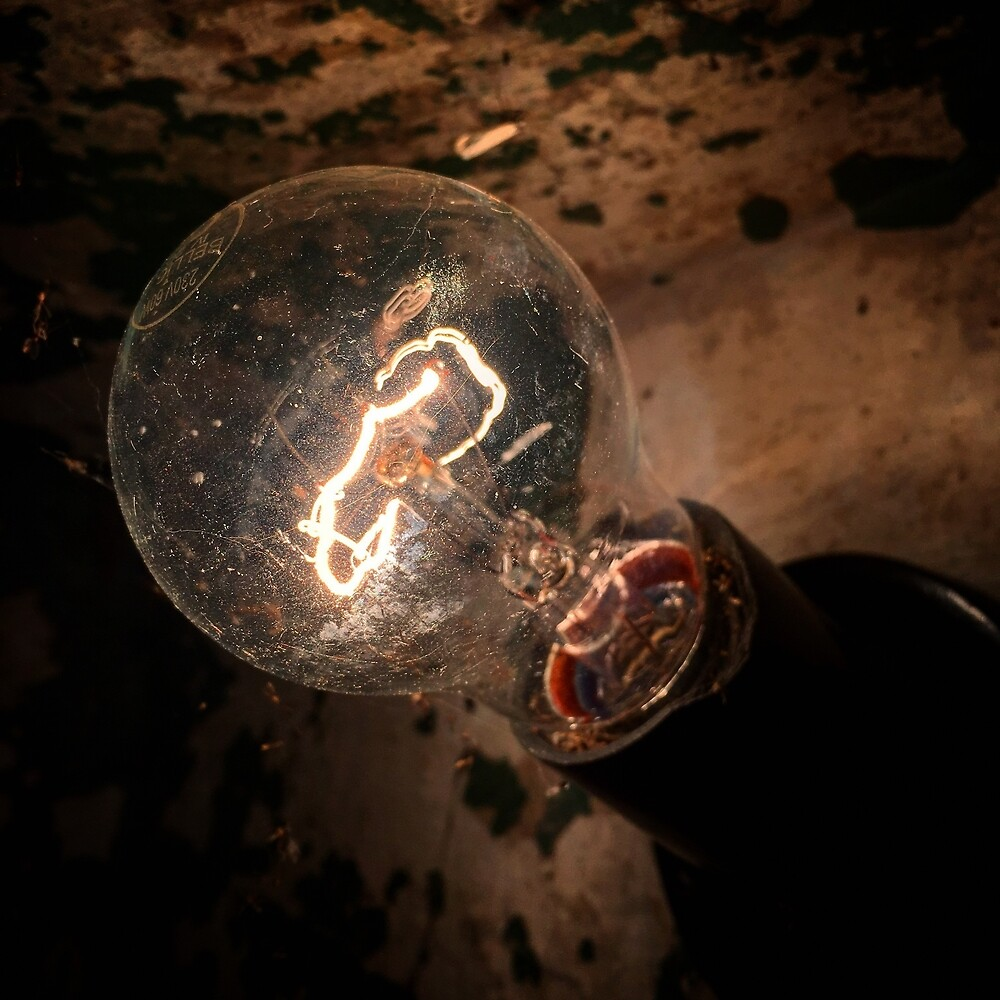 The lightbulb by Mikhail Zhirnov