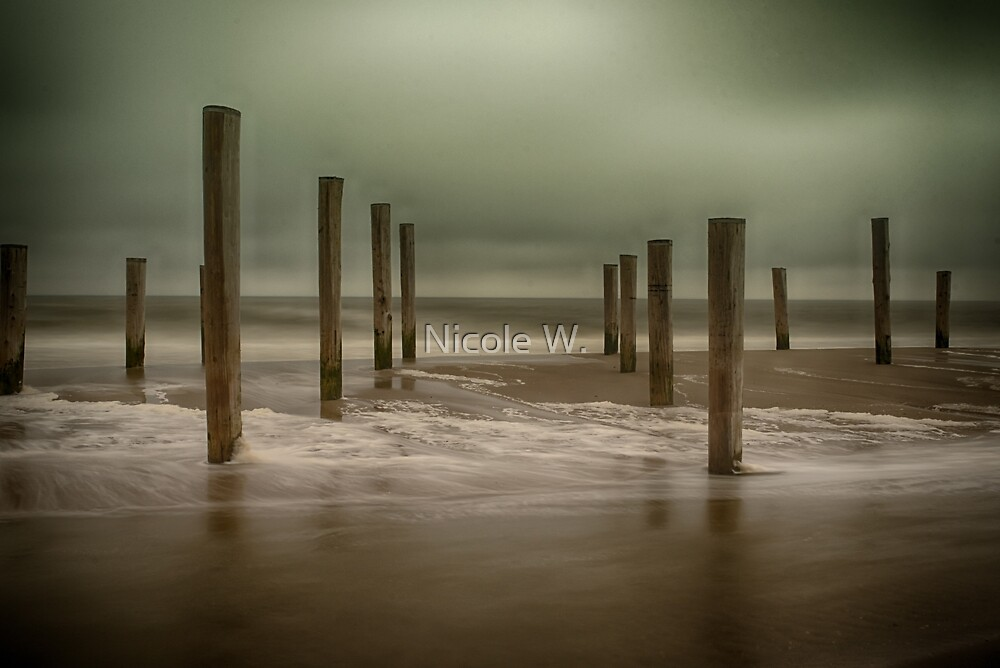 poles in water by Nicole W.