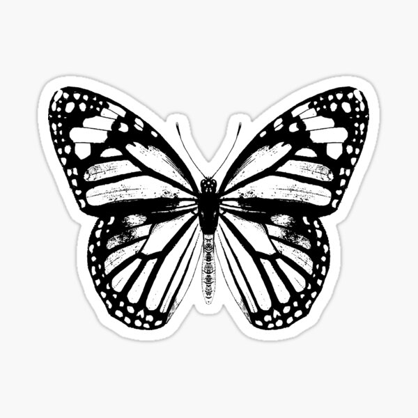 Monarch Butterfly Pattern | Monarch Butterfly | Vintage Butterflies | Butterfly Patterns | Black and White |  Sticker