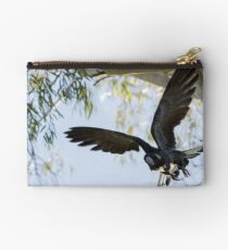 Carnaby's Cockatoo flying out of a Gum tree. Studio Pouch