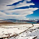 OWENS VALLEY VIEW by Barbara  Brown