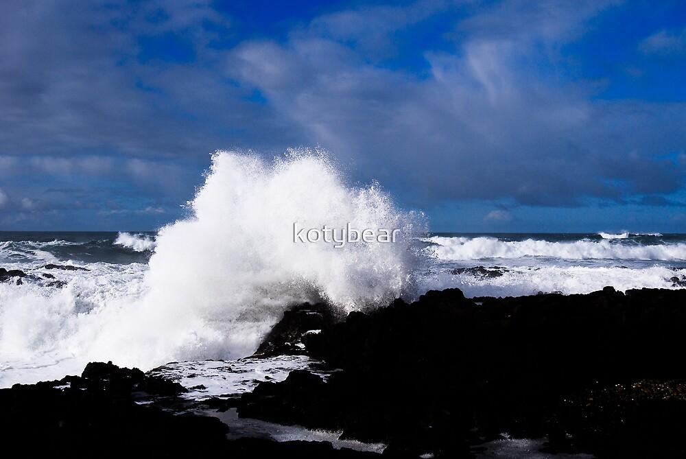 Winter Surf by kotybear