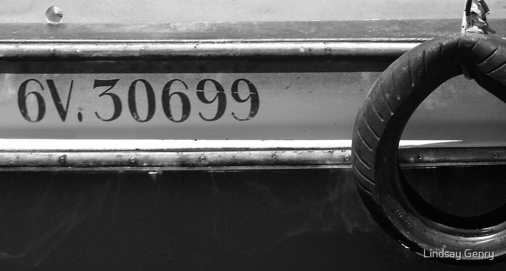 6V. 30699 by Lindsay Genry