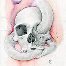Eternal Mortality  by Damara Carpenter