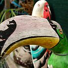 Aged toucan. by Northcote Community  Gardens