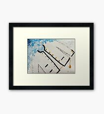Delicate armour. Framed Print