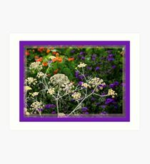 The Colours Seen Through Natural Lace of Nature Art Print
