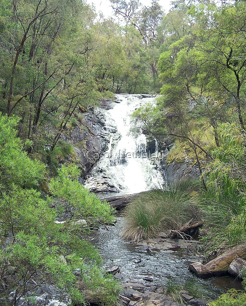 beedalup falls happy birthday by Carol  Lewsley