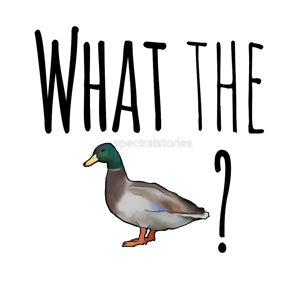 What the duck? by spectralstories