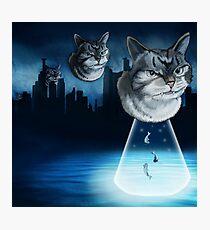 Alien kitten Photographic Print
