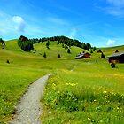 Walk in the green by annalisa bianchetti