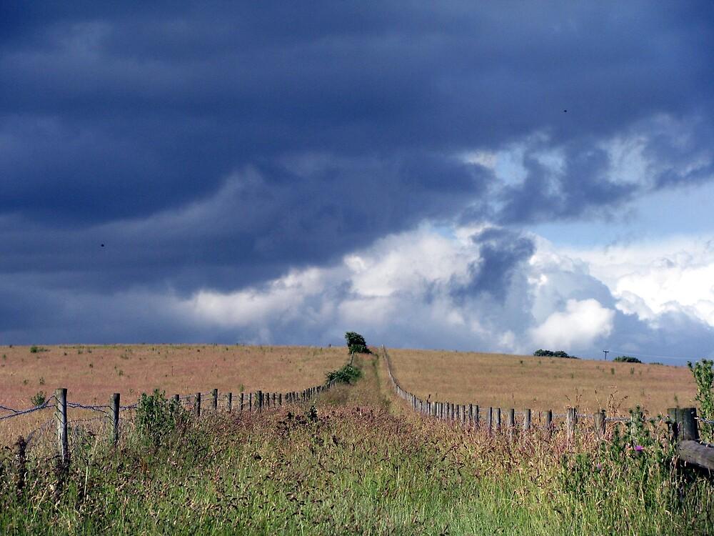 approaching rain by Caroline Anderson