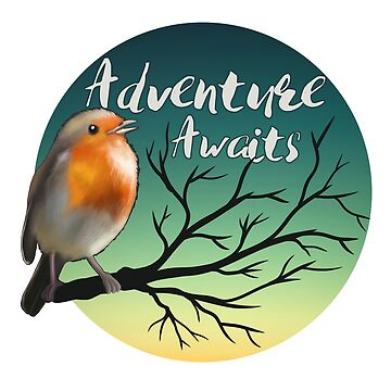 Adventure awaits - robin by spectralstories