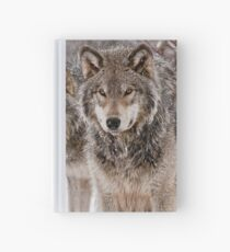 Timber Wolf Pair Hardcover Journal
