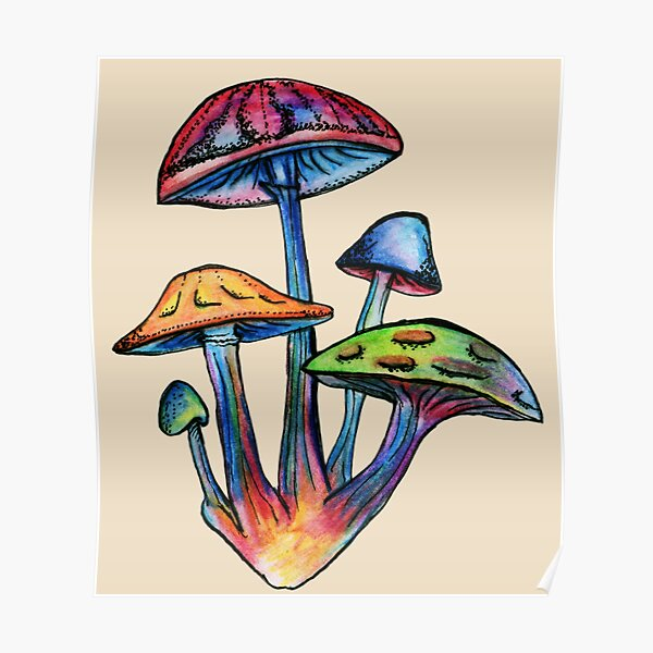 Cluster of Colored Shrooms Poster