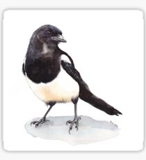Magpie Sticker