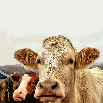 Cow gaze by anni103