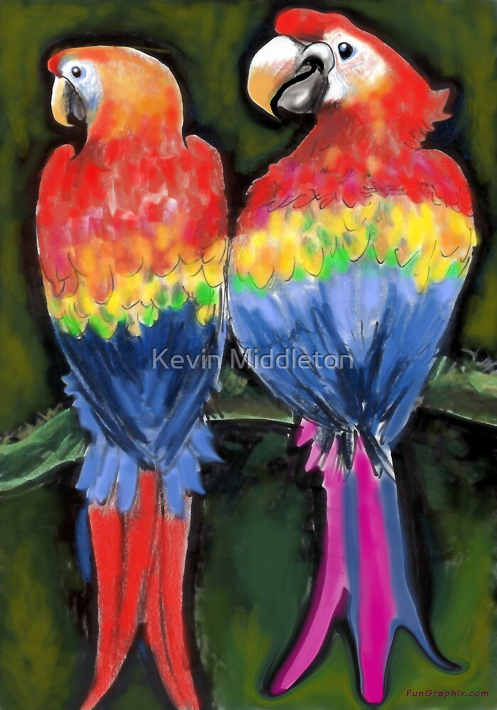 Parrots by Kevin Middleton