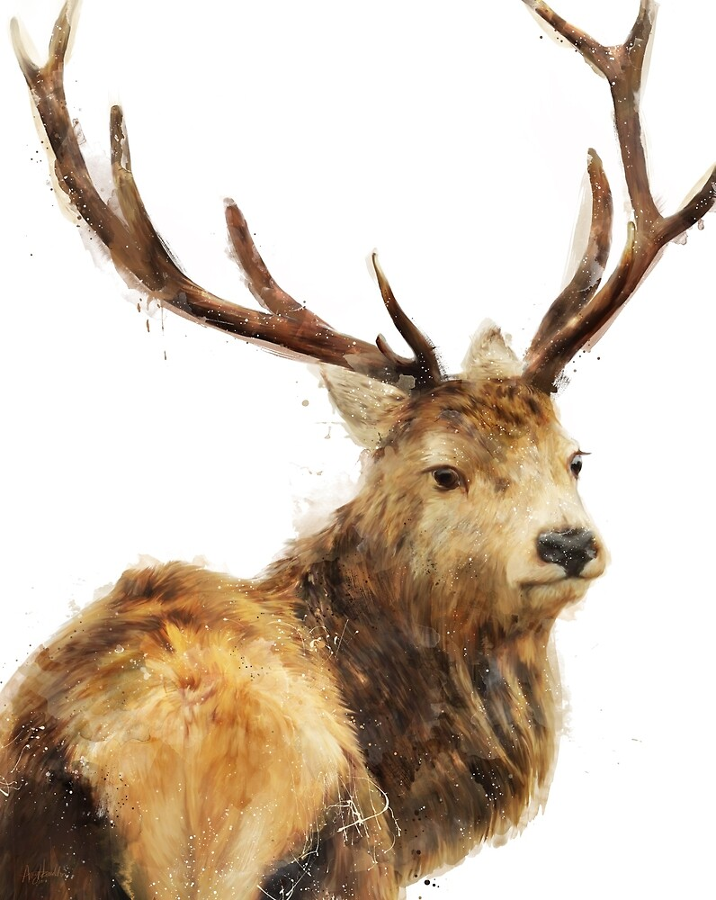 Winter Red Deer by Amy Hamilton