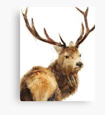 Winter Red Deer Canvas Print