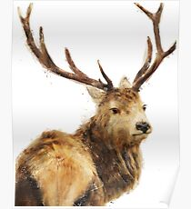 Winter Red Deer Poster